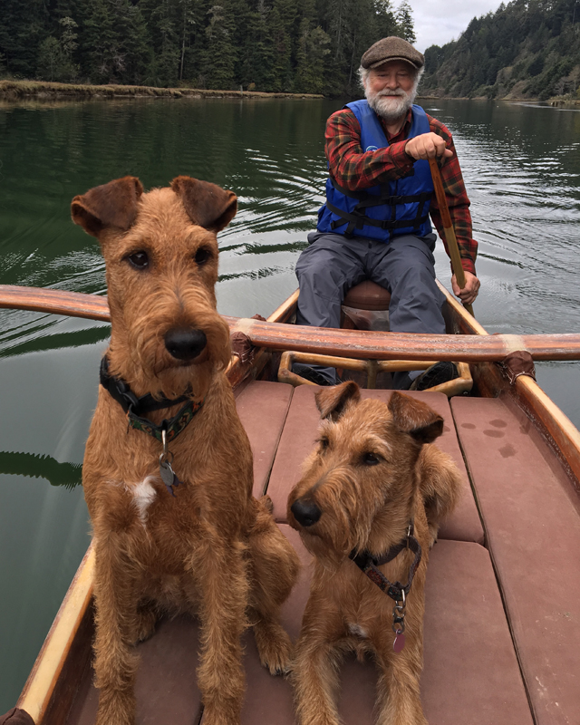 Irish Terriers in Canoe